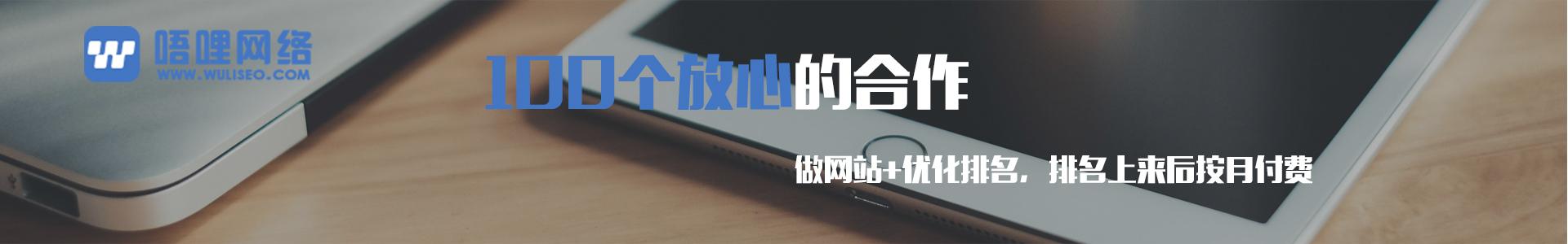 重庆网站建设专注企业网站建设,SEO优化服务